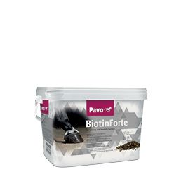 Supplementen - BiotinForte € 44.95